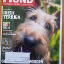 """2019.09.13 – Royal Rubys in der Zeitschrift """"Der Hund"""""""